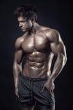 Stark idrotts- mankonditionmodell Torso som visar stora muskler Arkivbild