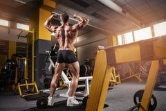 Stark idrotts- mankonditionmodell Torso som visar tillbaka muskler Arkivbild