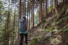 Stark kvinna som fotvandrar i bergen arkivfoton