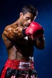Stark muskulös boxare i röda boxninghandskar En man i boxare s Royaltyfria Foton