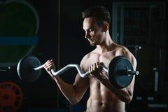 Stark muskulös man som utarbetar i idrottshallen som gör övningar med skivstången på biceps royaltyfri fotografi