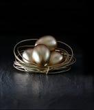 Stark Nest Egg Royalty Free Stock Photography
