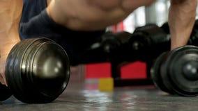 Stark sportive man som gör hantelliggande armhävningövningen som förbereder sig för konkurrens stock video