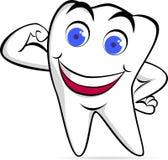 stark tand Arkivbild