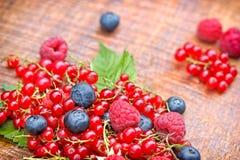 Starka antioxidants - bärfrukter Arkivbilder