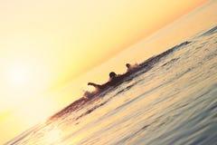 Starke Athletenschwimmen im Wasser bei Sonnenuntergang Stockbild