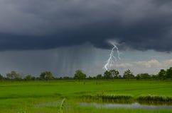 Starke Beleuchtung im Regen über dem Feld Lizenzfreies Stockfoto