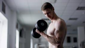 Starke Bodybuilderübungen mit Dummköpfen mit dem nackten Torso in einer Turnhalle stock video