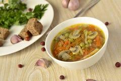 Starke Gemüsesuppe mit Pilzen Lizenzfreie Stockfotografie