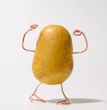 Starke Kartoffel, die wie ein Eignungsmodell aufwirft Lizenzfreie Stockfotografie