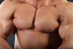 Starke Kasten- und Handmuskeln des Bodybuilders Stockfoto