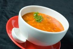Starke russische Suppe lizenzfreie stockfotos