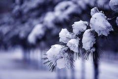 Starke Schneefälle Lizenzfreie Stockfotografie