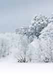 Starke Schneefälle Stockfoto