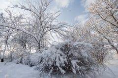 Starke Schneefälle Stockfotografie