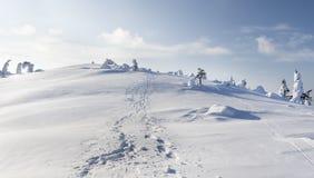 Starke Schneefälle lizenzfreie stockfotos