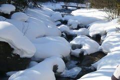 Starke Schneefälle auf dem Flussufer Stockbild