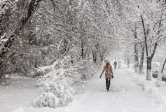 Starke Schneefälle in Kiew, Ukraine, am 5. Februar 2015 Lizenzfreies Stockbild
