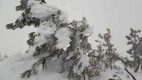 Starke Schneefälle nach Schneesturm stock video