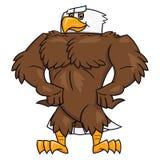 Starker Adler, der 2 aufwirft Stockbild