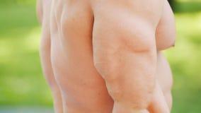 Starker athletischer Mann mit dem muskulösen Torso rüttelt sein Bizeps stock video