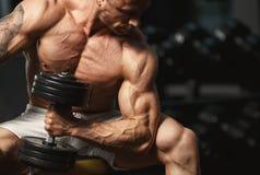 Starker Bodybuilder, der Übung mit Dummkopf tut Stockbilder