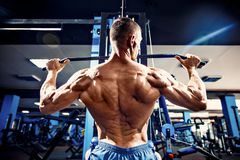 Starker Bodybuilder, der Schwergewichts- Übung für Rückseite auf Maschine tut Lizenzfreies Stockbild