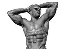 Starker Bodybuildermann mit perfekter ABS, Schultern, Bizeps, Trizeps und Kasten Lizenzfreie Stockbilder