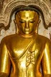 Starker goldener Buddha mit vorstehendem drittem Auge Stockfotografie