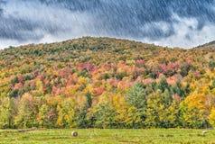 Starker Regen auf Neu-England Laubszenario Stockbild