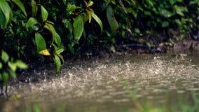 Starker Regen im Sapa-Tal lizenzfreies stockbild