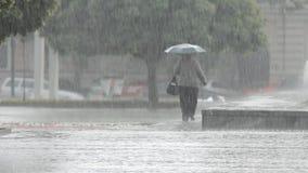 Starker Regen im Stadt-Park stock video footage