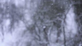 Starker Schnee fällt langsam, Winterhintergrund stock footage