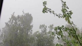 Starker Sturm und schlechtes Wetter vom Wohnungsfenster Starker Wind und Regen kühlen Gesamtlänge des schlechten Wetters ab stock video