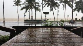 Starker tropischer Regenguß stock video