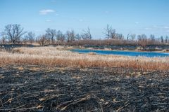 Starkes Feuer in der Steppe See Lizenzfreie Stockfotos