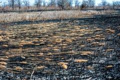 Starkes Feuer in der Steppe Versengtes Gras Lizenzfreie Stockfotos