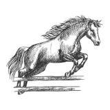 Starkes Pferd, das über Sperre springt lizenzfreie abbildung