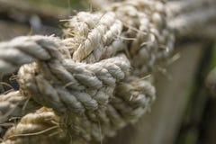 Starkes und raues Seil Lizenzfreie Stockbilder