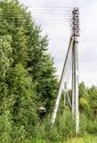 Starkstromleitungssäule nahe dem Waldhintergrund, Natur Lizenzfreie Stockbilder