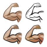 Starkt manligt arm, handmuskler, bicepssymbol eller symbol Idrottshall hälsa, proteinlogo den främmande tecknad filmkatten flyr i vektor illustrationer