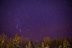 Free Starlight In Winter Night Royalty Free Stock Photography - 169882317