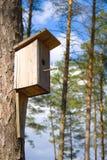 Starling Haus Lizenzfreie Stockbilder