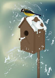 Starling house. With a bird Stock Image