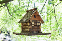 Starling house for birds on tree in summer park Stock Photo