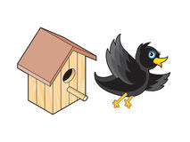 Starling and Nesting Box Royalty Free Stock Photos