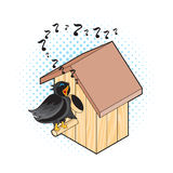 Starling and Nesting Box. Black Bird Sings near the Nest Stock Photography
