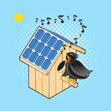 Starling and Nesting Box with solar panel Stock Image