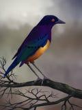 Starling op een Tak - het Digitale Schilderen Stock Afbeeldingen