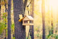 Starlingshuis in de herfstpark Stock Afbeeldingen